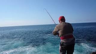 Pesca de sargo!