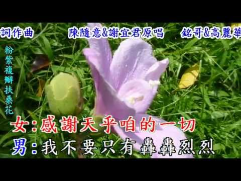 今生的諾言(台語對唱~陳隨意+謝宜君)銘哥+高麗華翻唱