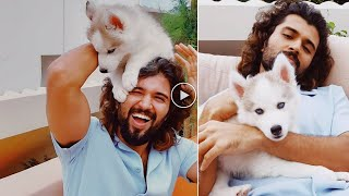 Tollywood hero Vijay Devarakonda plays with his new pet, g..