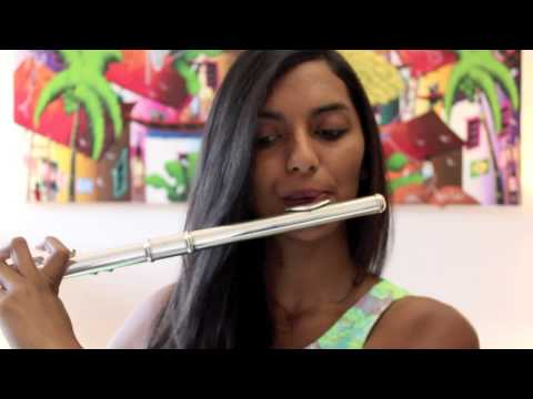 Baixar Come and get it - Selena Gomez flute cover