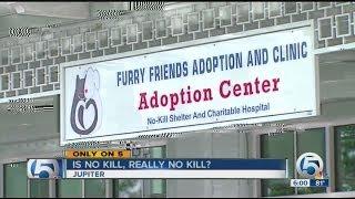 Are no kill animal shelters really no kill?