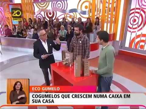"""Gumelo no """"Você na TV"""" 22/03/2013"""