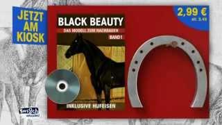 Black-Beauty-Bauanleitung