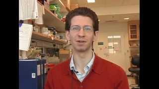 Ben Singer, Fellow in the University of Michigan Medical Scientist Training Program