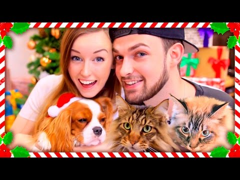 MERRY CHRISTMAS FROM US!! -  (with Ali, Eevee + the cats!)