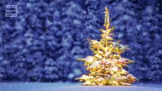 3 HOURS ☆ CHRISTMAS MUSIC ♫ Christmas Music Instrumental ♫ Christmas Songs ☆ Ultra HD 2160p. 4K.