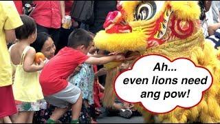 Feeding The Lions With Ang Pows At Starling Damansara Utama