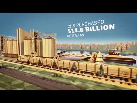 CHS Economic Impact Animation