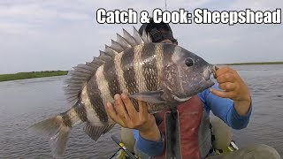CATCH & COOK: Sheepshead (POOR MAN'S LOBSTER)