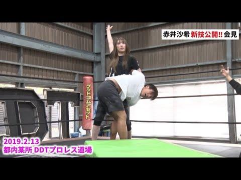 2019年2月13日 赤井沙希新技公開練習会見