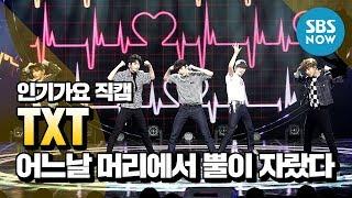 [인기가요]  TXT (TOMORROW X TOGETHER) 직캠 / SBS INKIGAYO 'TXT' FanCam