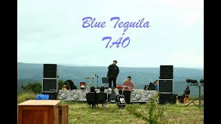 Blue Tequila - Táo | Live at Chill on the Hill Dalat