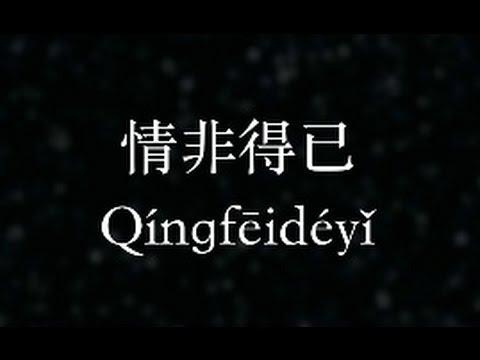 庾澄慶:情非得已 (KTV with Pinyin)