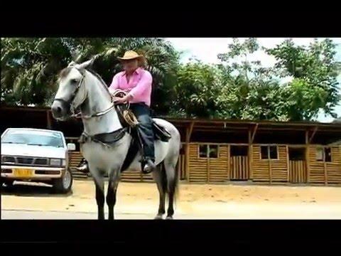 ORGULLO CAQUETEÑO(ANTHONY ZAMBRANO)