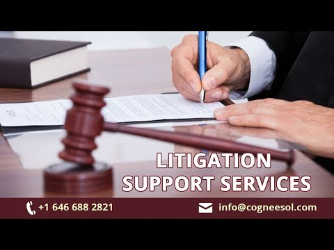 How Litigation Support Services Affect Profitability of Law Firms?
