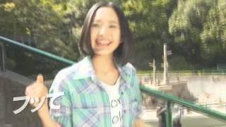 AKB1/149 恋愛総選挙20