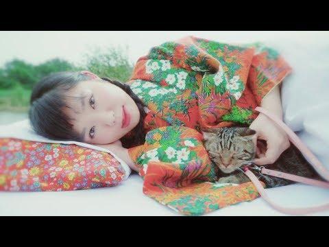 にゃんぞぬデシ「ネゴト」MUSIC VIDEO
