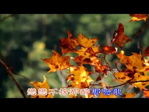 張蓉蓉~戀戀那卡西~KTV 1080P