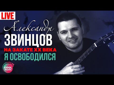 Александр Звинцов   На закате XX века 13  Я освободился