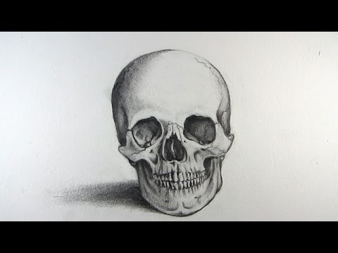 Baixar How to Draw a Realistic Skull: Narrated Step by Step