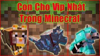 Nếu Bạn Nuôi Được Con Chó Vip Nhất Trong Minecraf** Sự Tiến Hóa Của Con Chó Trong Minecraft