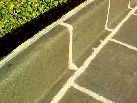 impermeabilizzazione terrazzo ferrara