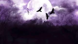 Moon in Gemini Personality Traits 🌜♊
