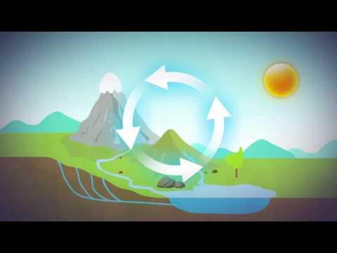 Vattnets kretslopp och försurning (NO)