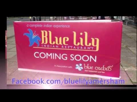 Blue Lily (Amersham)
