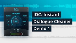 IDC Instant Dialogue Cleaner Demo