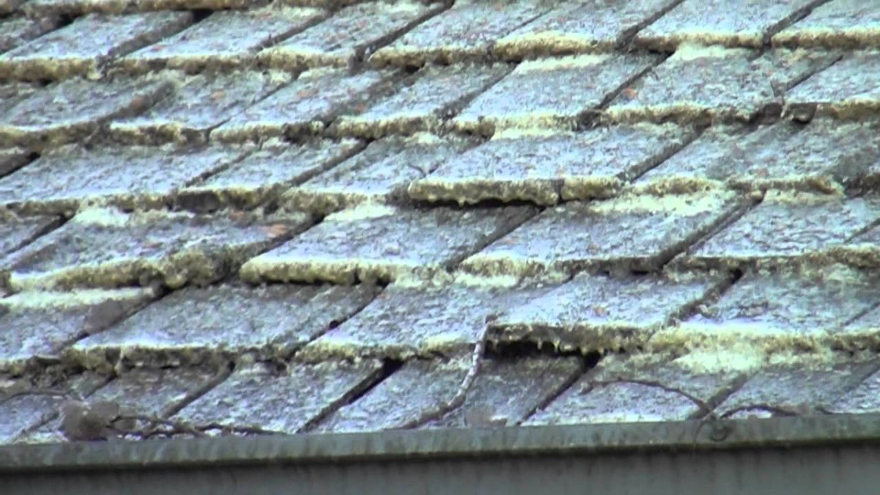 Cedar Roof Cleaning Removing Lichen Sullivan Roof