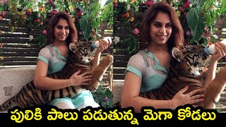 Upasana Konidela feeds tiger cub, pic goes viral..