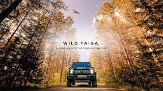 Finland - Into the true wild nature