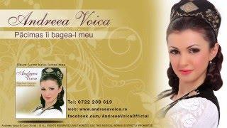 Andreea Voica - Pacimas ii bagea-l meu