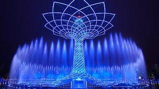 TREE OF LIFE / ALBERO DELLA VITA - EXPO MILANO 2015