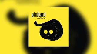 Pinhani - Sen Olmayınca