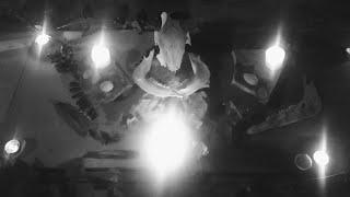 Renäcer - Renäcer / Live Ritual (Segovia 11/08/2020)