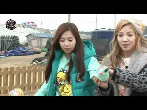 IY2 Sunny, Amber, Hyoyeon, Yewon play with donkey [ep 17 CUT]