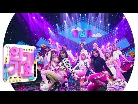 Cherry Bullet(체리블렛) - Q&A @인기가요 Inkigayo 20190203