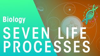 Seven Life Processes | Biology for All | FuseSchool
