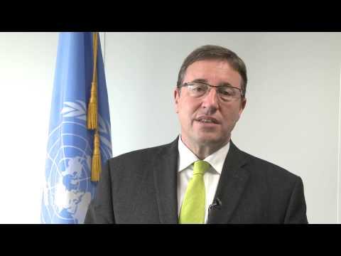 Achim Steiner: IRP REDD Green Economy