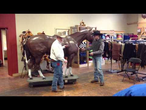 How to Measure a Horse blanket