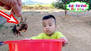 Trò Chơi Bé Bắt Con Cua ❤ Baby catch crabs ❤ Giải trí cho Bé yêu