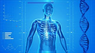 Amazing Fast Facts About The Human Body