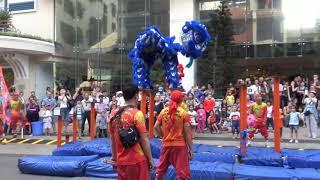 Múa Lân Nguyễn Huệ Sài Gòn mùng 2 Tết Mậu Tuất 2018
