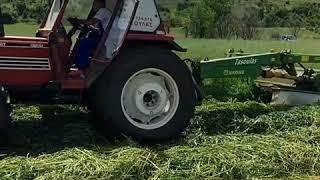 KRONE amt 283 making hay with FIATAGRI 100-90