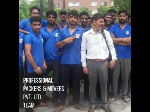 Professional Packers And Movers Pvt. Ltd. Offices Video