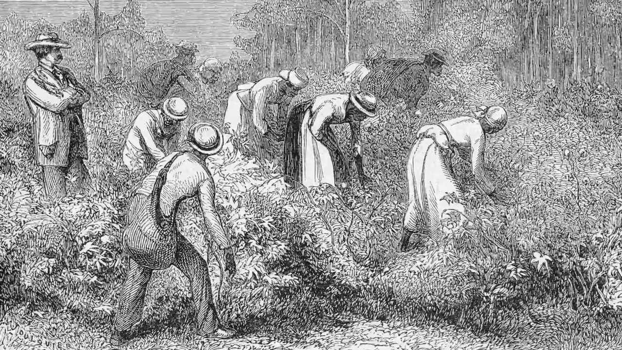 An introduction to the issue of slaves the history of african americans in the united states