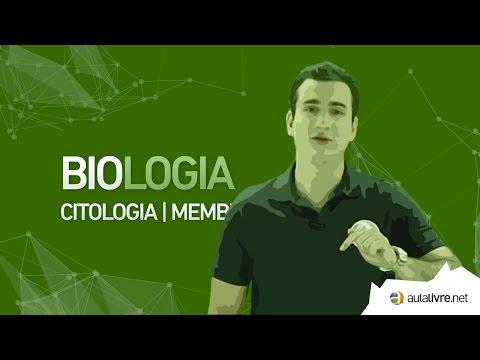 Biologia - Composição da Membrana Plasmática