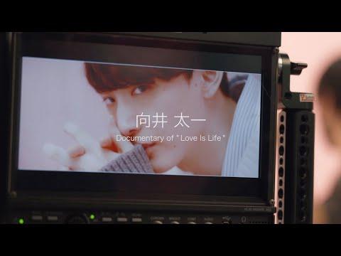 向井太一 / Love Is Life(Documentary Video)